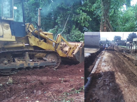 Uprooting Trees on Mende Road  – Wakiso District